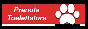 I-Catania imprint form