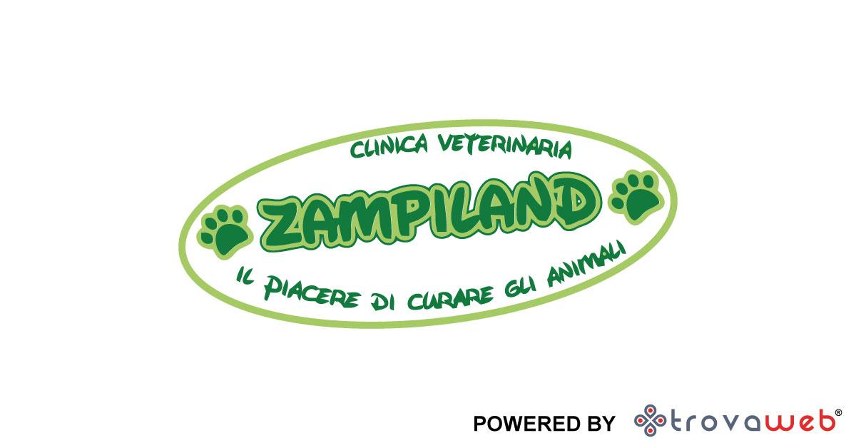 கால்நடை Zampiland - அங்கீகரிக்கப்பட்ட Tirrena