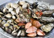 un-gros-fruits-de-mer-bardetta-messina.jpg
