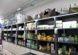 acquari-negozio-mangimi-animali-toelettatura-blue-oasi-cefalu-palermo-10.JPG