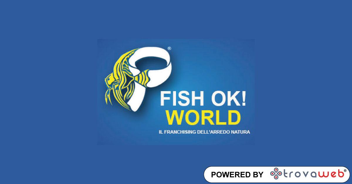 Ameublement Aquariums Poissons Tropicaux PFish Ok! World - Palermo