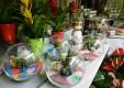 Décorations-fleurs-plantes-le-fleuriste-Messine-01.JPG