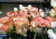 Décorations-fleurs-plantes-le-fleuriste-Messine-03.JPG