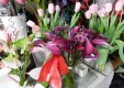 Décorations-fleurs-plantes-le-fleuriste-Messine-08.JPG