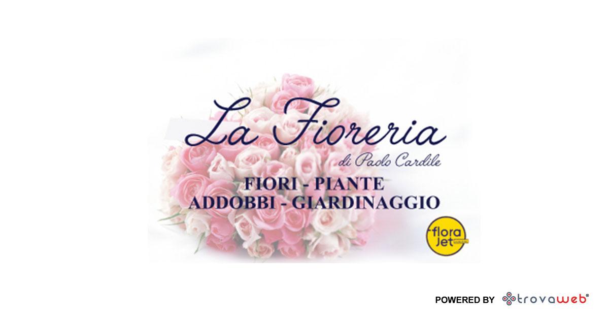 Décorations Fleurs et Plantes La Fioreria - Messina