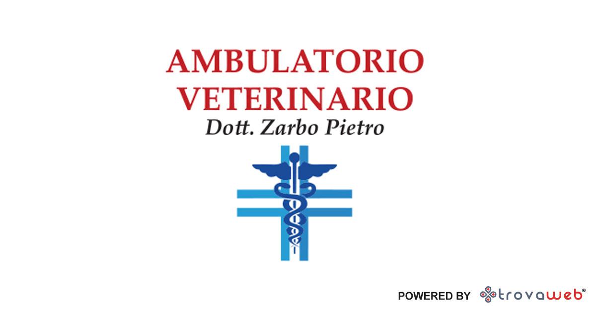 Ambulatorio Veterinario Zarbo - Messina
