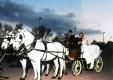 carrozze-epoca-matrimoni-molonia-messina-11.JPG