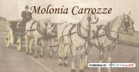 Carrozze d'Epoca per Matrimoni Molonia - Messina