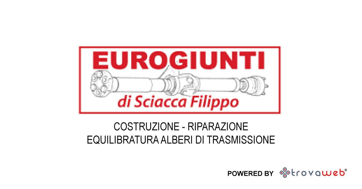 Eurogiunti Alberi di Trasmissione e Giunti - Italia