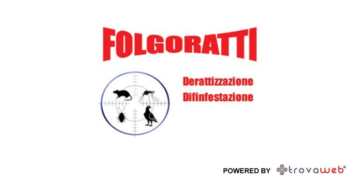 Folgoratti - பூச்சி - சிசிலி