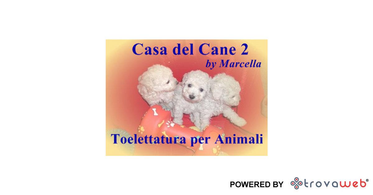 La Casa del Cane 2 a Messina