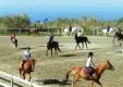la-pineta-club-ippico-villafranca-tirrena-(12).JPG