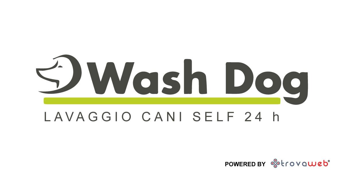Lavaggio Cani Milano
