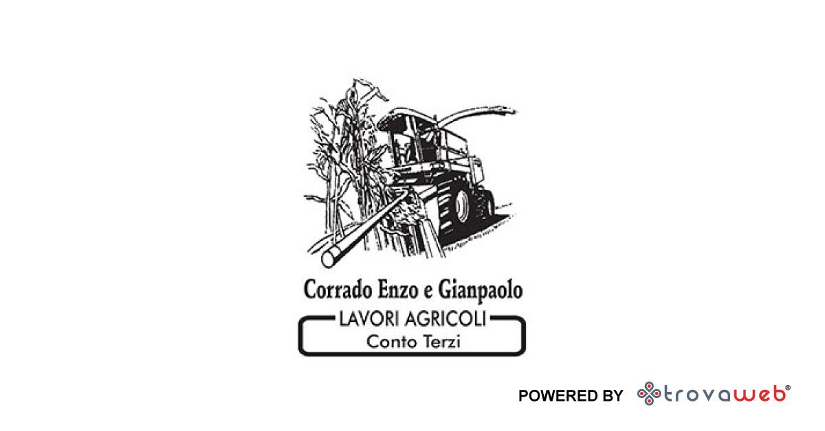 Lavori Agricoli Corrado Enzo e Gianpaolo - Tarantasca