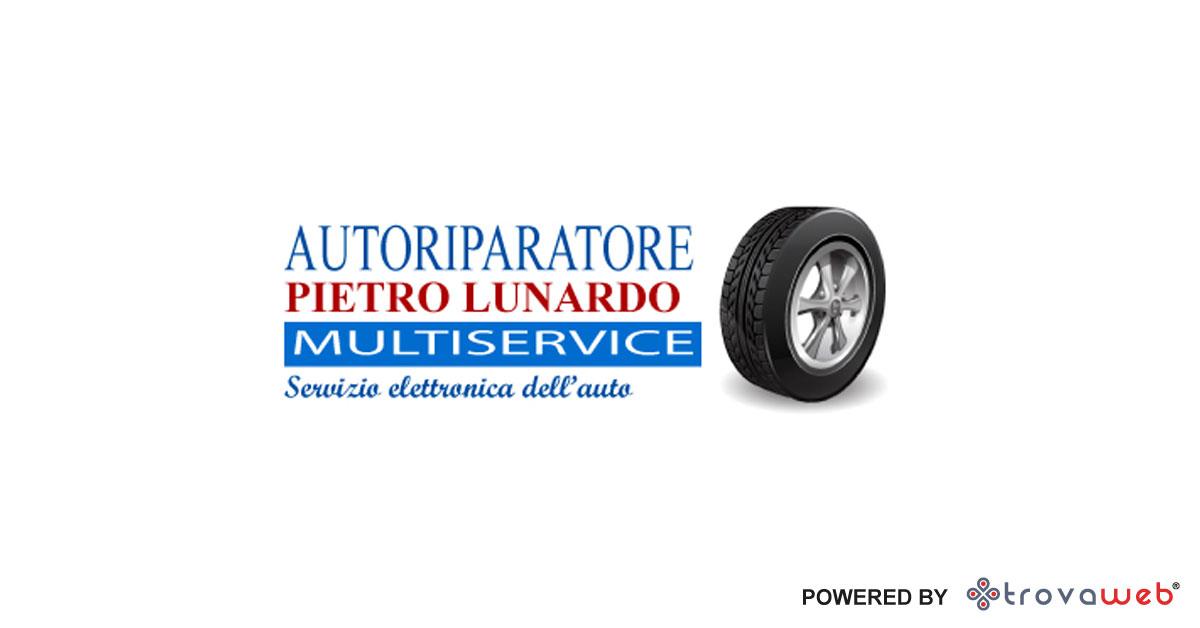维修电工皮特罗·卢纳多 - 巴勒莫