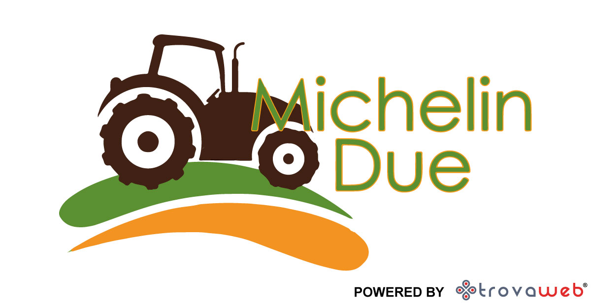 Michelin Due Electric Bikes Landmaschinen - Genua