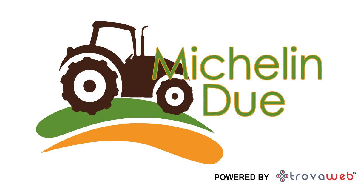 Macchine Agricole Bici Elettriche Michelin Due - Genova