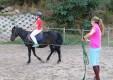 maneggio-scuola-di-equitazione-pony-club-dello-stretto-messina-01.JPG