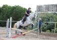 maneggio-scuola-di-equitazione-pony-club-dello-stretto-messina-12.JPG