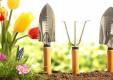 manutenzione-giardini-potatura-fitoterapia-genova-(6).jpg