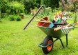 mantenimiento-jardines-poda-herbolaria-Genova (8) .jpg