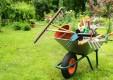 manutenzione-giardini-potatura-fitoterapia-genova-(8).jpg