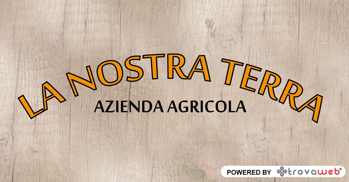 Verduras y verduras naturales Nuestra tierra - Messina