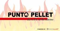 Pellet e Legna Ingrosso e Dettaglio Ecopellet - Palermo