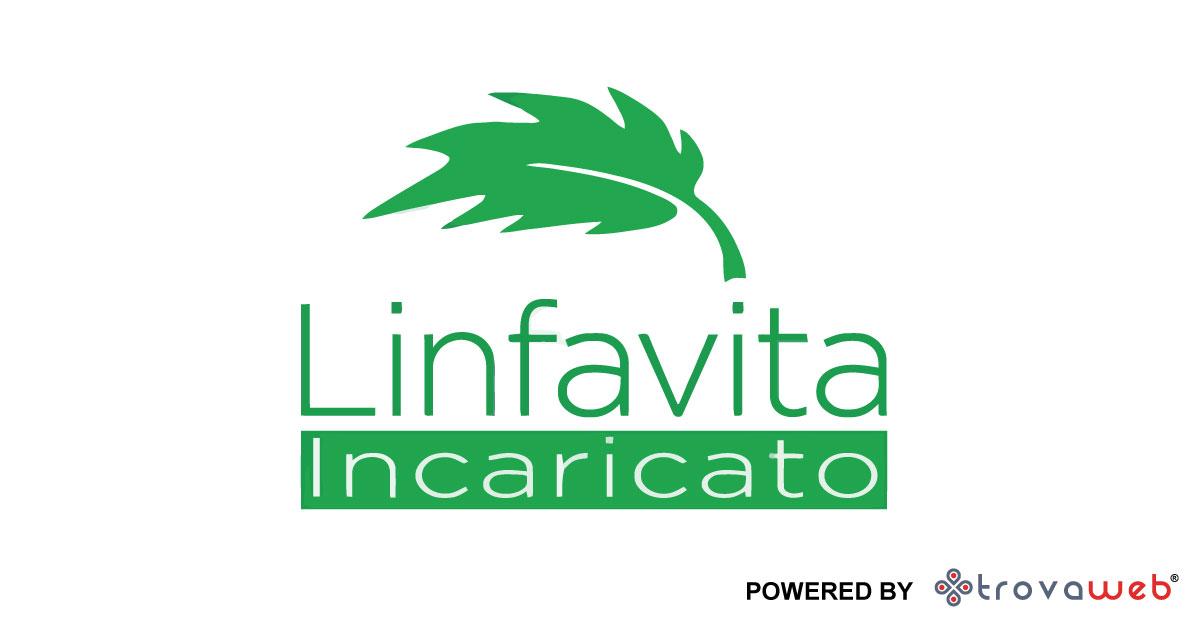 Incaricato Prodotti naturali Linfavita - Pisa