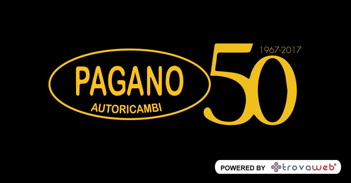 汽车Pagano AutoRicambi  - 热那亚的备件