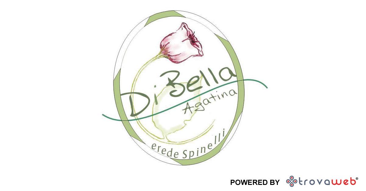 Sanitaria Erboristeria Di Bella  - 西西里Furci