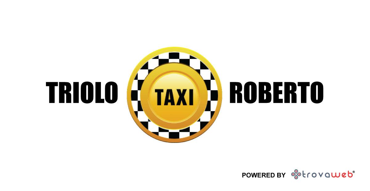 出租车和出租车司机罗伯托Triolo  - 墨西拿