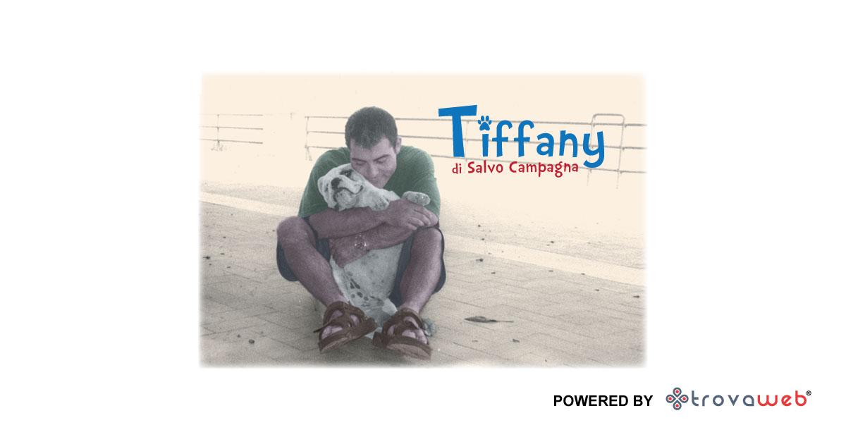 Tiffany - Toelettatura Animali - Messina