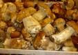 trattoria-vegia-zena-a-genova-typical-cuisine (6) .jpg