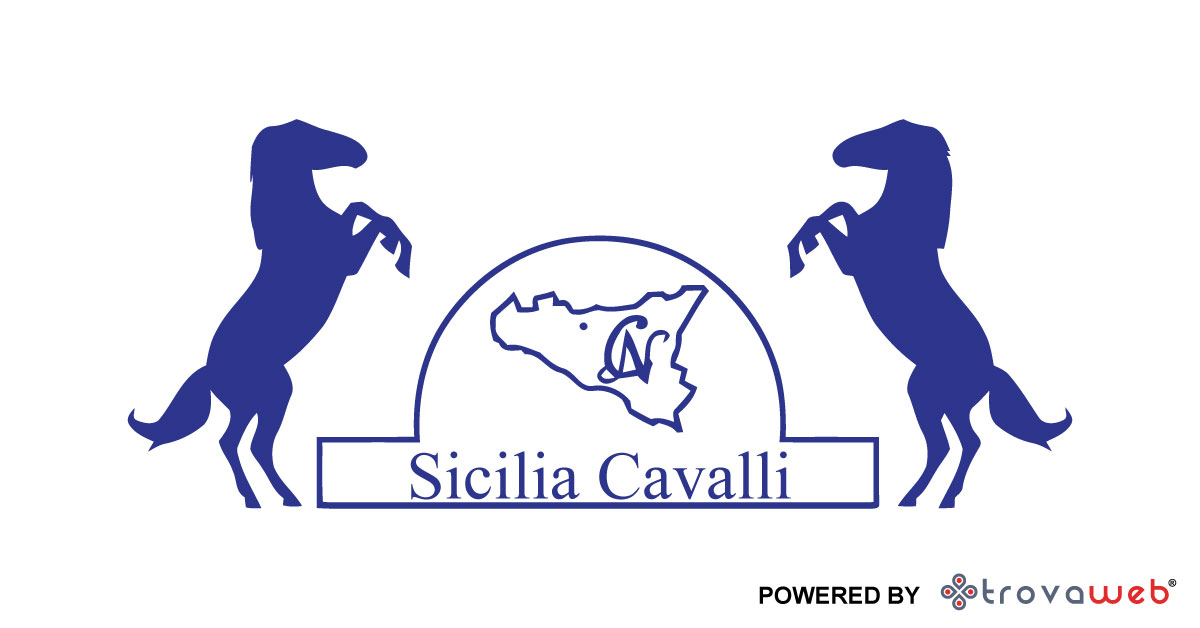 Verkauf und Ausbildung von Pferden Sizilien - Italien