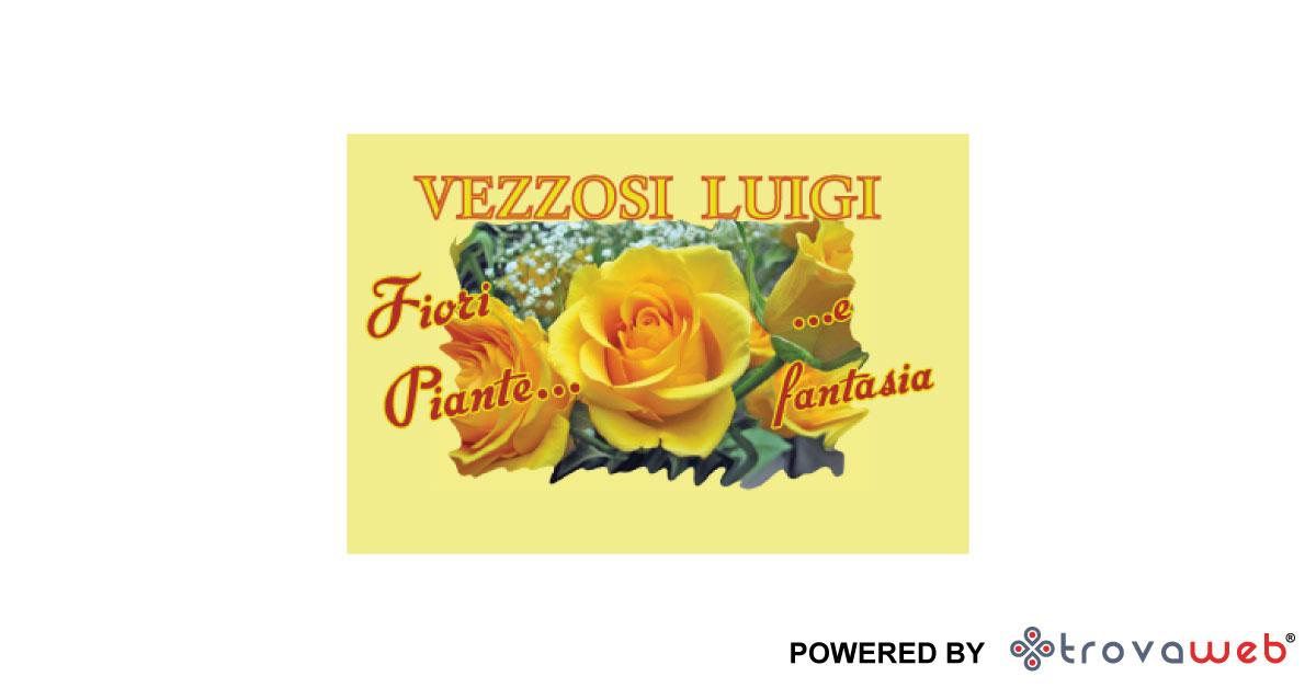 Vezzosi Fleurs et Plantes - Messine
